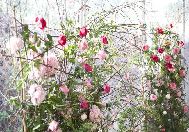 Florabundance Design Days