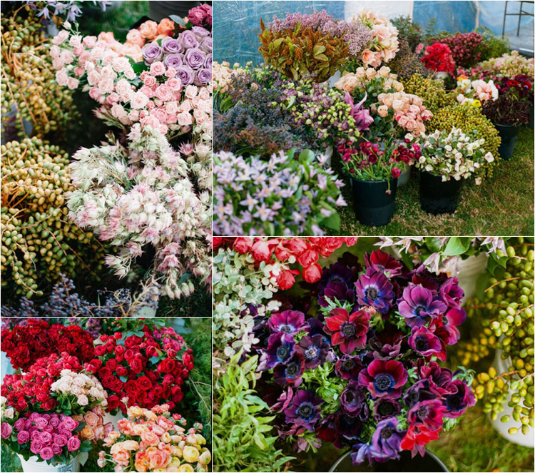 Florabundance Inspirational Design Days - a selection of flowers available from Florabundance