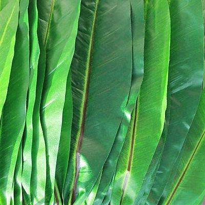 ti-leaf-green