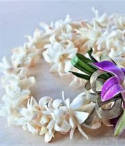 Orchid Lei, Dendro Double-white