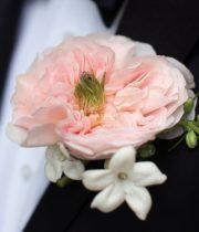 Rose Garden, Charity-SA