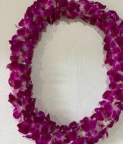 Orchid Lei, Dendro Double-white/purple