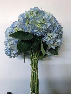 wholesale hydrangea-blue