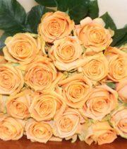 Rose, Shukrani-SA