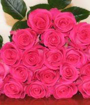 Rose, Topaz-SA