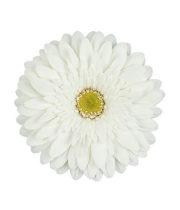 Gerberas, Mini-white (10 Stems)