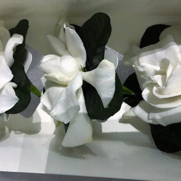 gardenia-fancy-boxed