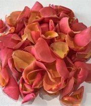 Rose Petal Bag-coral