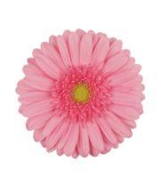 Gerberas-pink (10 Stems)