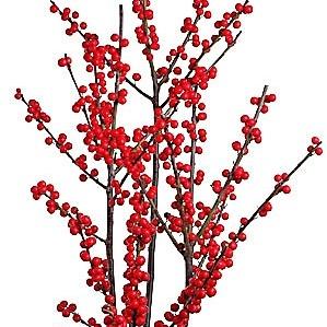 wholesale-ilex-berry-red
