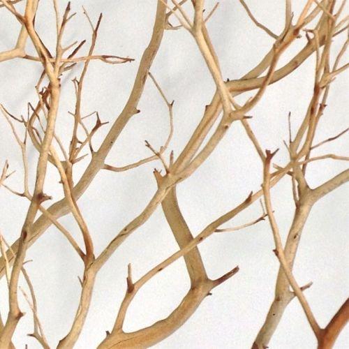 wholesale manzanita natural