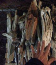 Driftwood, Large