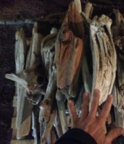 Driftwood-large