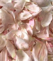 Rose Petal Bag-pink