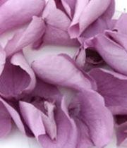 Rose Petal Bag-lavender