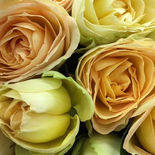 Quatre Coeurs Rose