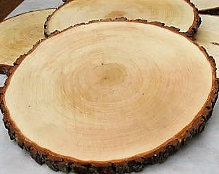 LARGE-WOOD-SLICES