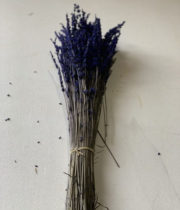 Dried & Preserved Lavender