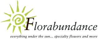Florabundance Wholesale Flowers