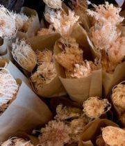 Dried Fennel Flower-pink
