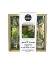 Moss Frame Kit, 7″